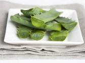 家养芦荟能吃吗?