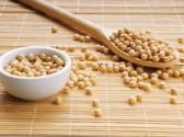 痛风病人不能吃豆制品吗?